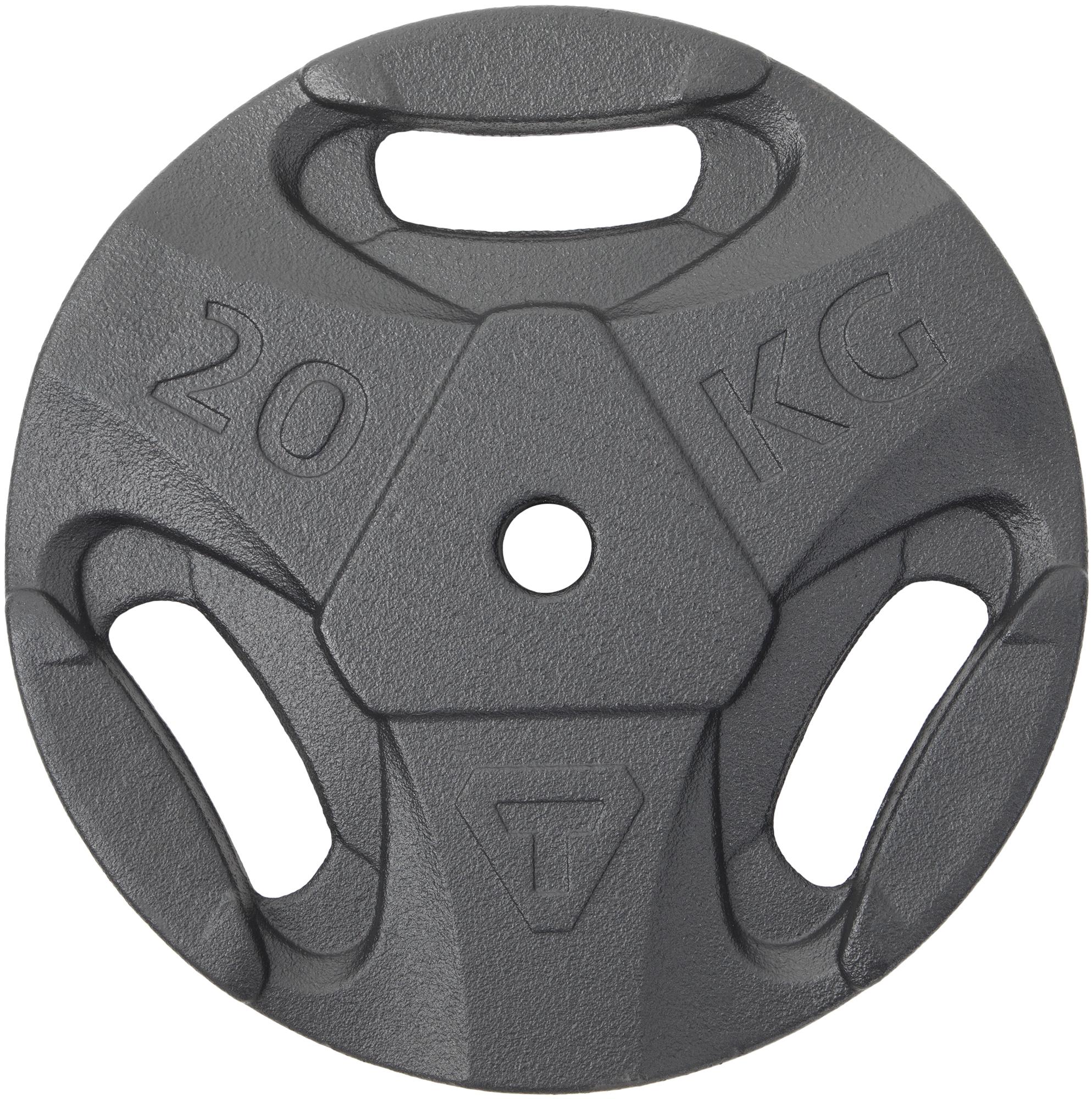 Фото - Блин стальной Torneo, 20 кг, 2020-21 torneo блин torneo в пластиковом корпусе 0 5 кг 2020 21
