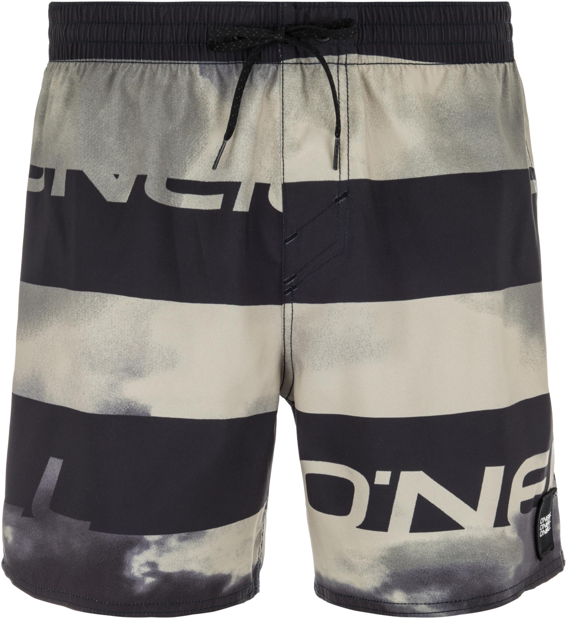 O'Neill Шорты пляжные мужские O'Neill Hm Sunstroke, размер 46-48 molo шорты пляжные nario рассвет