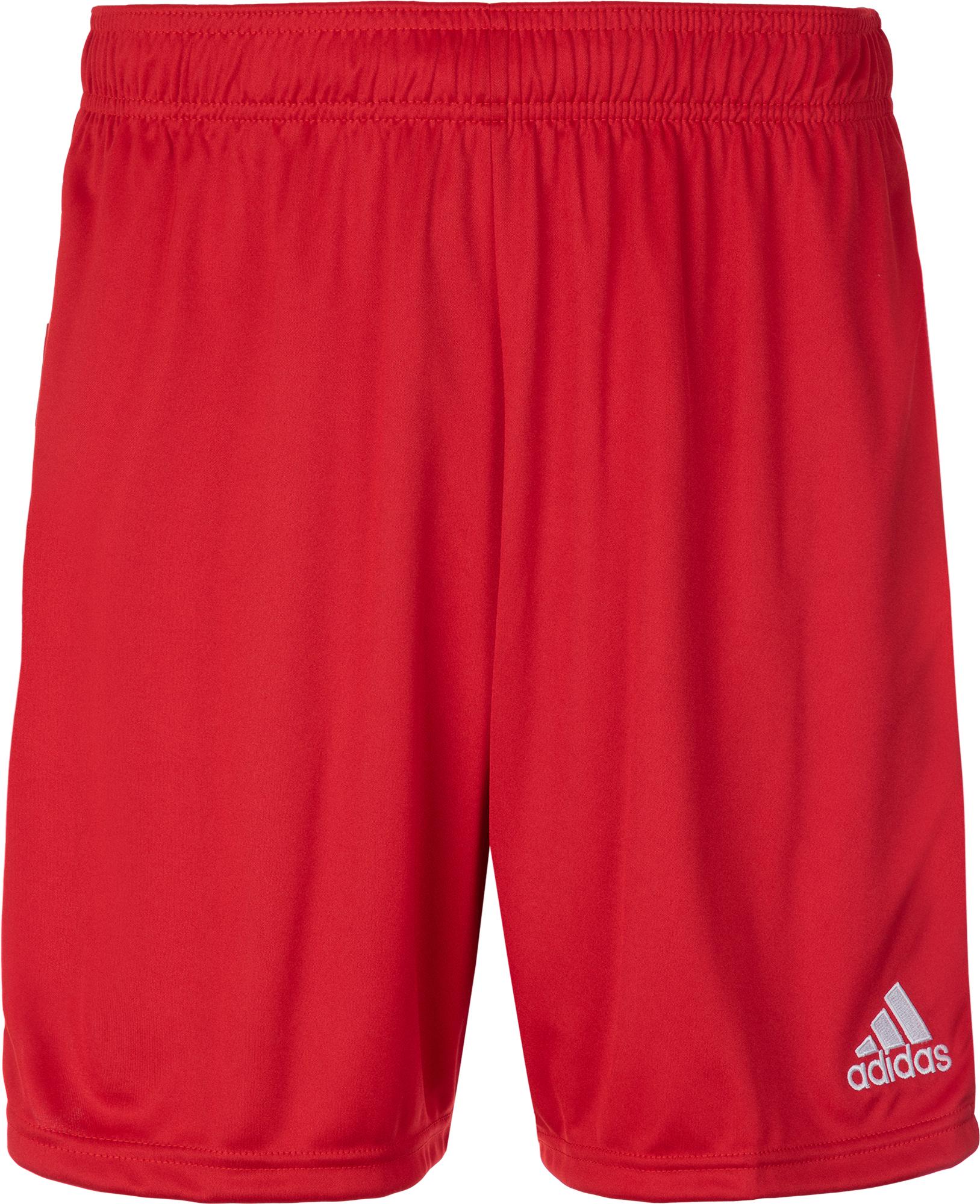 Adidas Шорты мужские Adidas Tastigo 19, размер 54 стоимость