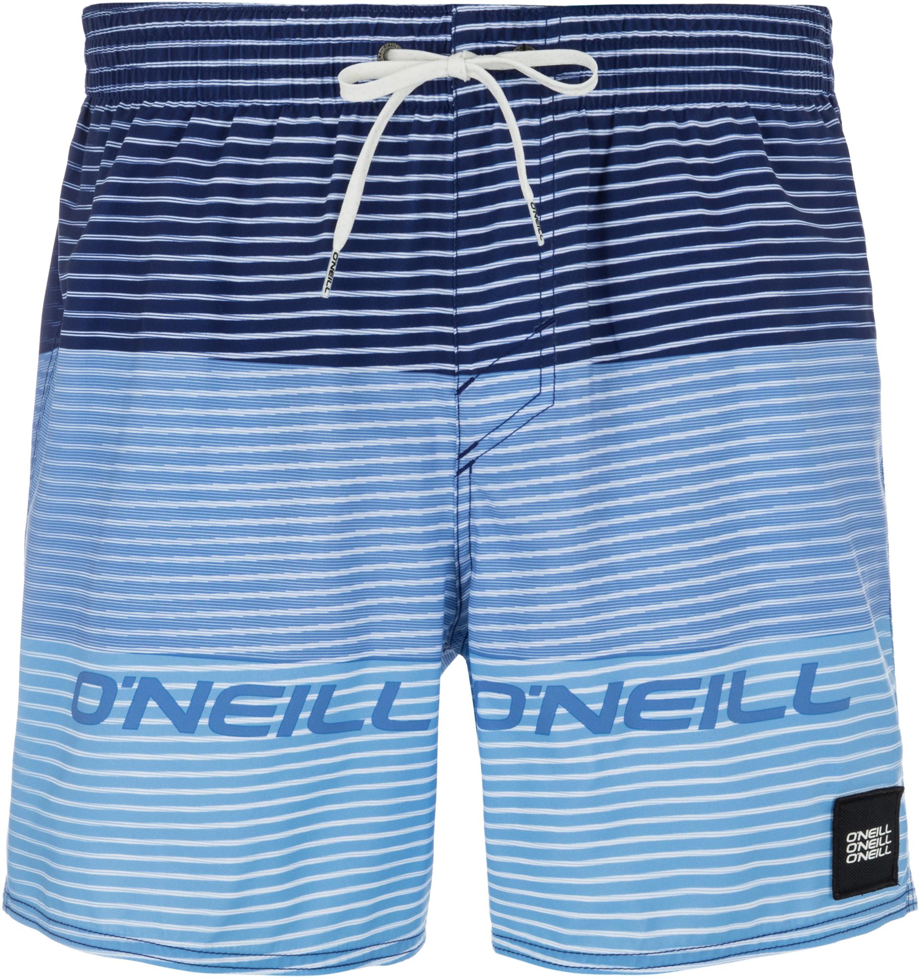 O'Neill Шорты пляжные мужские O'Neill Hm Sunstroke, размер 50-52 molo шорты пляжные nario рассвет