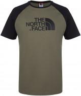 Футболка мужская The North Face Raglan Easy