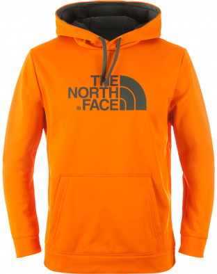 Джемпер мужской The North Face Surgent Halfdome