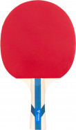 Ракетка для настольного тенниса Torneo Training