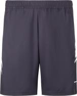 Шорты мужские Nike Court Dri-FIT