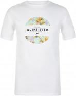 Футболка мужская Quiksilver Flaxton