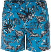 Шорты пляжные мужские Termit