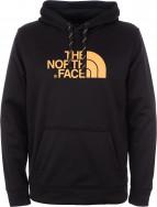 Толстовка мужская The North Face Surgent