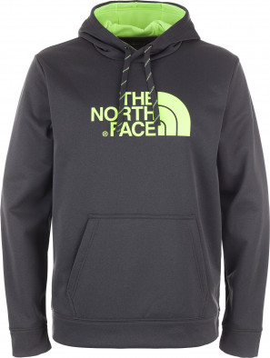 Джемпер мужской The North Face Surgent