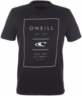 Футболка мужская O'Neill True Surf