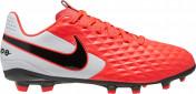 Бутсы для мальчиков Nike Legend 8 Club Fg/Mg