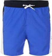 Плавательные шорты мужские Speedo Sport Splice 16