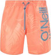 Шорты пляжные мужские O'Neill Cali