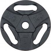 Блин стальной Torneo, 5 кг