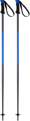 Палки горнолыжные Head Multi S