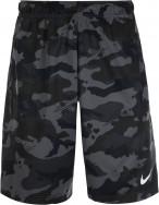 Шорты мужские Nike Dry