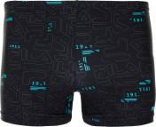 Плавки-шорты мужские Fila
