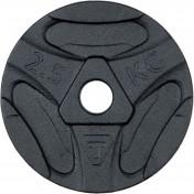 Блин стальной Torneo, 2,5 кг, 2020-21
