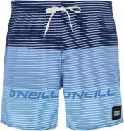 Шорты пляжные мужские O'Neill Hm Sunstroke