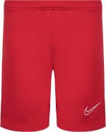 Шорты для мальчиков Nike Dry Academy