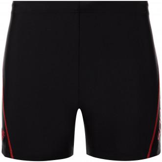 Плавки-шорты мужские Speedo Splice Logo