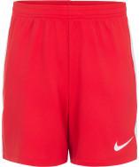 Шорты для мальчиков Nike Dry