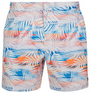 Шорты плавательные мужские Speedo Vintage Paradise 16